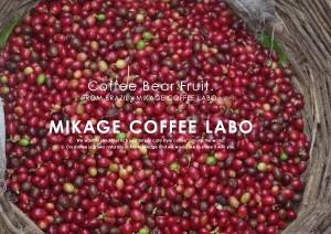 2012.11.21ミカゲコーヒーラボ