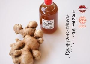 2013.1.31生姜の恵み05