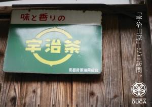 2013.4.11櫻花の宇治抹茶01