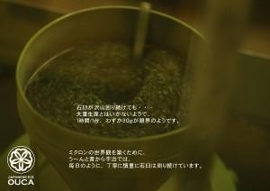 2013.4.11櫻花の宇治抹茶12