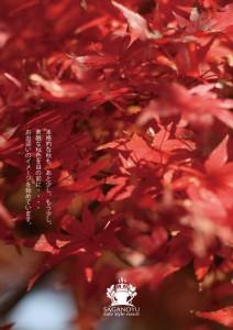 2014.10.22嵯峨野湯の秋準備03