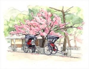 2015.3.25京都嵯峨嵐山風景画(人力車)