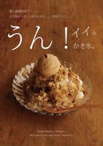 2015.7.18嵯峨嵐山のかき氷「きな粉まみれ」!