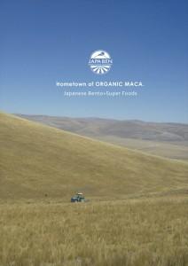 2015.7.24標高4000mの食材「オーガニックマカ」05