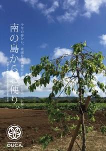 2015.8.19種子島「安納芋畑」02