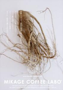 2015.9.28信州高麗人参の素材(ミコボ)