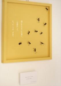 2016.1.14蟻が十匹の作品との出逢う東京!01
