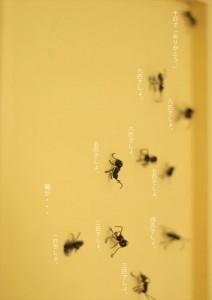 2016.1.14蟻が十匹の作品との出逢う東京!02