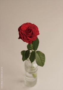 2016.11.10株式会社ウィンウィンアソシエ(お花の盛り付け研修)デザイン室07