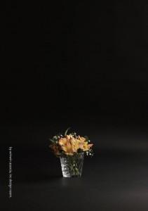 2016.11.19ウィンウィンアソシエ(花の盛り付け研修)05