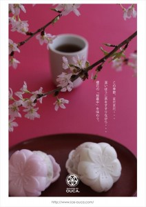 2016.3.29恵比寿土産の桜最中(ジャパニーズアイス櫻花)03
