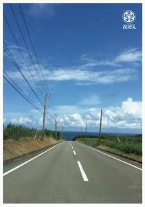 2016.7.26種子島の島バナナ、大きな青空と共に感謝01