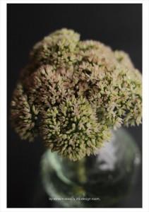2016.8.29ウィンウィンアソシエ(お花の盛り付け研修)デザイン室11