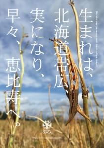 2016.9.27JapaneseIceOUCA(櫻花の小豆日和)00