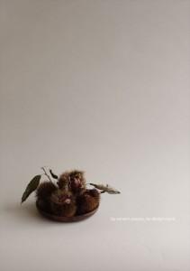 2016.9.30ウィンウィンアソシエ(お花の盛り付け研修)デザイン室05