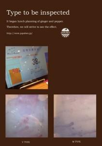 2017.2.5「生姜とヒハツの温活弁当(毛細血管と共に効果を感じる)」03