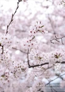 2017.4.11ジャパニーズアイス櫻花(10周年記念)05