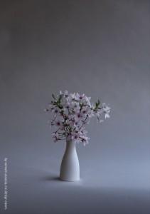 2017.4.17株式会社ウィンウィンアソシエ(お花の盛付け)01