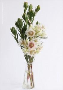 2017.8.1株式会社ウィンウィンアソシエ(お花の盛付け)デザイン室03