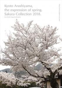 2018.3.30嵐山カフェ嵯峨野湯(2018春、桜の表情)11
