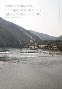 2018.3.30嵐山カフェ嵯峨野湯(2018春、桜の表情)29