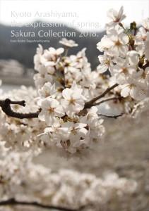 2018.3.30嵐山カフェ嵯峨野湯(2018春、桜の表情)33